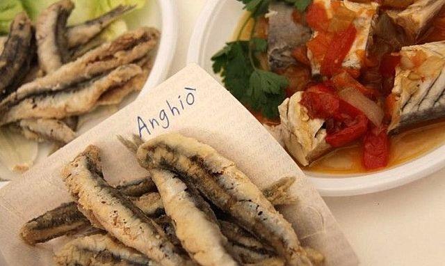 Anghiò,-il-festival-del-pesce-azzurro-approda-a-Porto-Sant'Elpidio