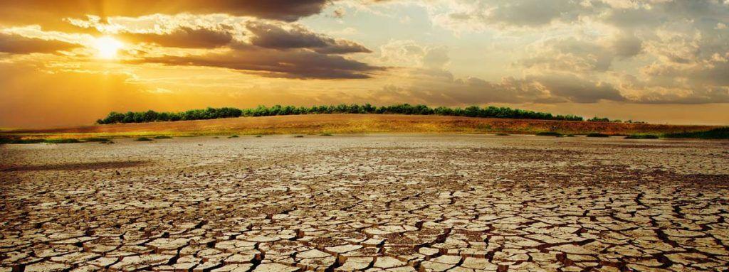 Conseguenze-dei-cambiamenti-climatici-sulla-salute
